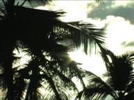 ПАНАМА. Пляжи — Beaches