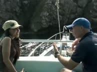 Diving Thailand Sail Rock 13 December 2013 Underwater video