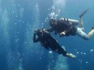 MANTA RAY at Sail Rock 01 April 2014 Underwater video
